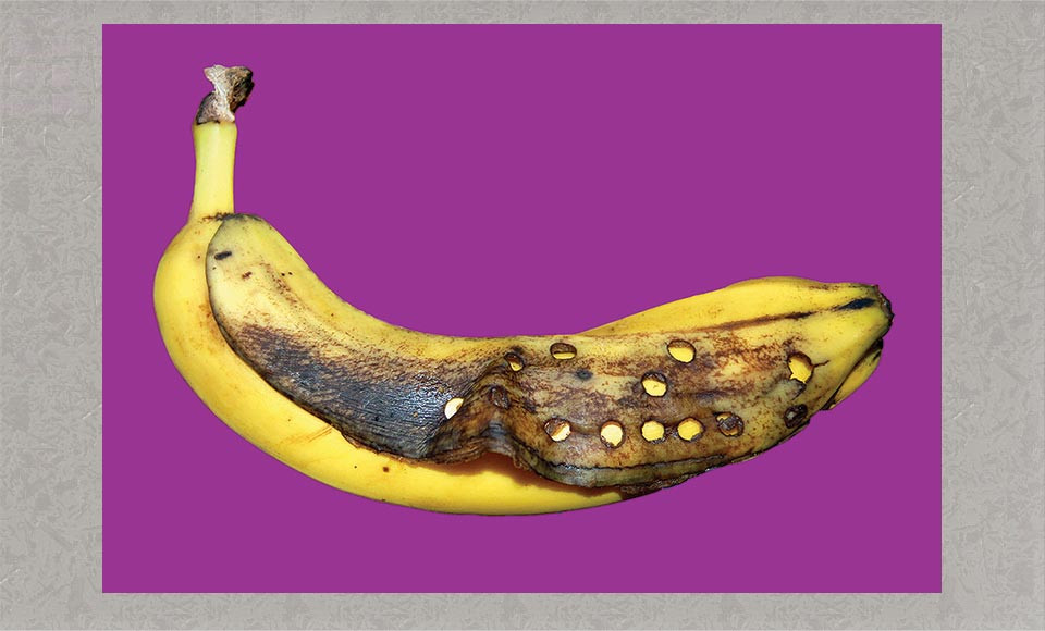 Braille Banana, photograph by Rebecca Dick